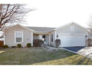7213 Faxton Lane, Plainfield, IL 60586 (MLS #09574198) :: MKT Properties | Keller Williams