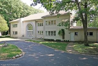 20831 Oak Lane, Olympia Fields, IL 60461 (MLS #09591942) :: MKT Properties | Keller Williams