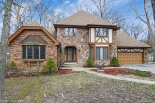40 Woodland Glen, Park Forest, IL 60466 (MLS #09594217) :: MKT Properties | Keller Williams