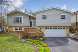 1257 Thomas Street, Homewood, IL 60430 (MLS #09595211) :: MKT Properties | Keller Williams