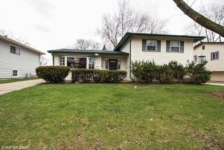 514 Chase Street, Park Forest, IL 60466 (MLS #09603862) :: MKT Properties | Keller Williams