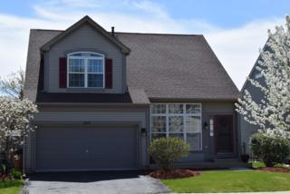 450 Windermere Way, Lake In The Hills, IL 60156 (MLS #09603872) :: MKT Properties | Keller Williams