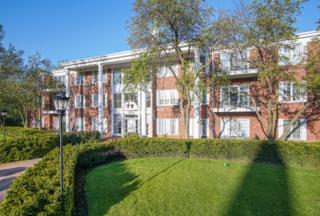 3415 Vollmer Road #308, Flossmoor, IL 60422 (MLS #09628397) :: MKT Properties | Keller Williams
