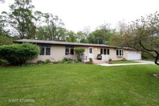 1310 Spring Beach Way, Cary, IL 60013 (MLS #09633918) :: Lewke Partners