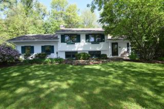 46 Little Cahill Street, Trout Valley, IL 60013 (MLS #09634456) :: Lewke Partners