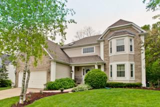 980 Chancery Lane, Cary, IL 60013 (MLS #09634691) :: Lewke Partners