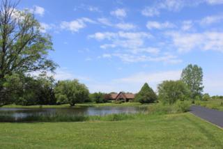 8405 Huntley Road, Crystal Lake, IL 60014 (MLS #09635105) :: Lewke Partners