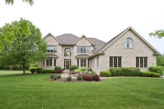 6001 Hawthorne Lane, Crystal Lake, IL 60014 (MLS #09635783) :: Lewke Partners