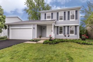 1458 Bridgedale Road, Crystal Lake, IL 60014 (MLS #09636829) :: Lewke Partners