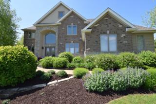 7 Bordeaux Court, Oakwood Hills, IL 60013 (MLS #09636960) :: Lewke Partners