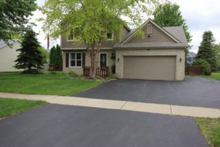 1192 Boxwood Drive, Crystal Lake, IL 60014 (MLS #09636993) :: Lewke Partners