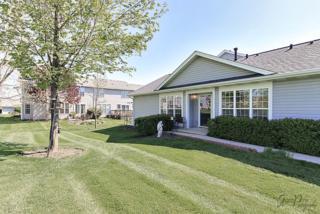 950 Ferrara Court, Cary, IL 60013 (MLS #09638814) :: Key Realty