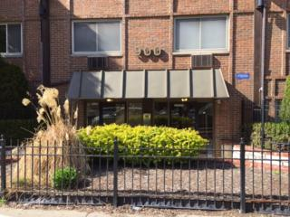 900 W Fullerton Avenue 5E, Chicago, IL 60614 (MLS #09638848) :: Property Consultants Realty