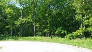 Lot 12 Autumn Ridge Drive, Crystal Lake, IL 60014 (MLS #09639565) :: Key Realty