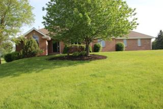 442 Overland Trail, Belvidere, IL 61008 (MLS #09639630) :: Key Realty