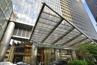 401 N Wabash Avenue 70D, Chicago, IL 60611 (MLS #09639645) :: Property Consultants Realty