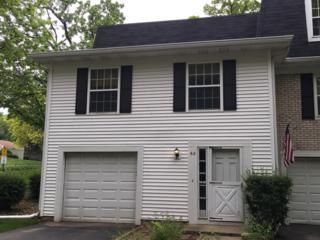 60 Oak Valley Drive, Cary, IL 60013 (MLS #09639725) :: Key Realty