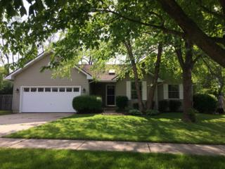 795 Eletson Drive, Crystal Lake, IL 60014 (MLS #09640080) :: Key Realty