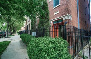 1302 W Fillmore Street #1, Chicago, IL 60607 (MLS #09640089) :: Property Consultants Realty