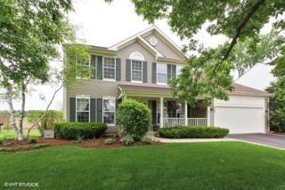 687 Northwind Lane, Lake Villa, IL 60046 (MLS #09640160) :: Property Consultants Realty