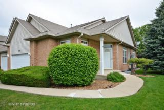 1703 Windward Avenue #1703, Naperville, IL 60563 (MLS #09640162) :: Property Consultants Realty