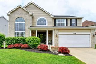 278 Spring Lake Drive, Round Lake, IL 60073 (MLS #09640163) :: Property Consultants Realty