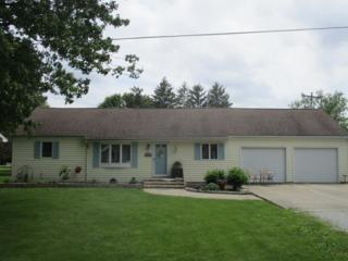 219 Orchard Avenue, ATWOOD, IL 61913 (MLS #09640172) :: Property Consultants Realty