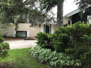 3134 Maple Leaf Drive, Glenview, IL 60026 (MLS #09640807) :: MKT Properties | Keller Williams