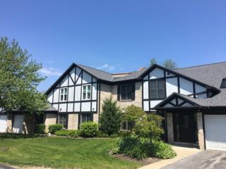 181 Grove Avenue D, Des Plaines, IL 60016 (MLS #09640826) :: MKT Properties | Keller Williams