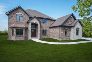 12070 Sarkis Drive, Mokena, IL 60448 (MLS #09561723) :: MKT Properties | Keller Williams