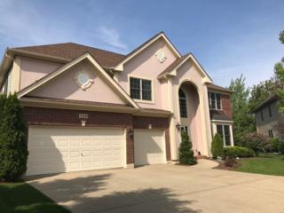713 Goldenrod Court, Crystal Lake, IL 60014 (MLS #09628590) :: Lewke Partners