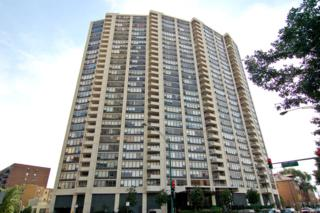 3930 N Pine Grove Avenue #3105, Chicago, IL 60613 (MLS #09639069) :: Property Consultants Realty