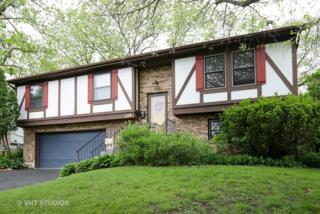236 Thomas Street, Cary, IL 60013 (MLS #09639512) :: Key Realty