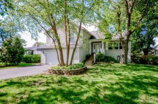 460 Ann Street, Cary, IL 60013 (MLS #09632740) :: Lewke Partners