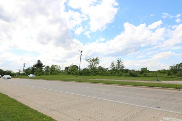 16370 W 159th Street, Lockport, IL 60441 (MLS #09642346) :: Ani Real Estate