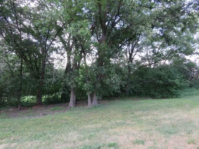 2925 Dartmouth Lane, Olympia Fields, IL 60461 (MLS #09678330) :: Janet Jurich