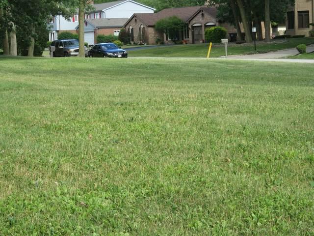 2935 Dartmouth Lane, Olympia Fields, IL 60461 (MLS #09678339) :: Janet Jurich