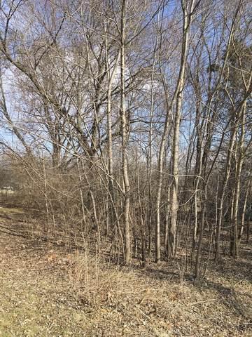 8408 Ramble Road, Wonder Lake, IL 60097 (MLS #09890990) :: John Lyons Real Estate