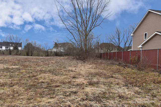 Lot 1 Inwood Lane, Winfield, IL 60188 (MLS #10159196) :: Jacqui Miller Homes