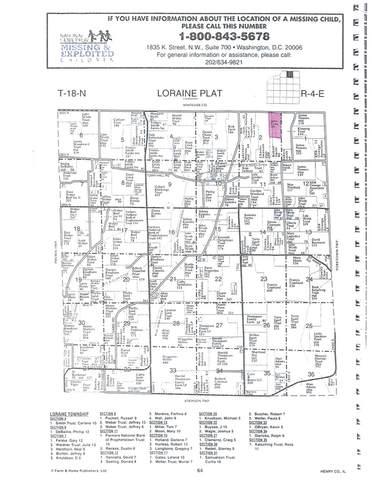 00 Osage Road, Prophetstown, IL 61277 (MLS #10269806) :: Helen Oliveri Real Estate