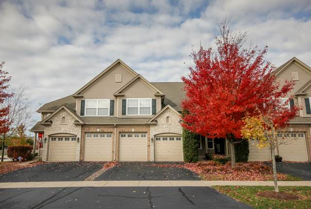 2027 Canyon Creek Drive #2027, Aurora, IL 60503 (MLS #10274845) :: The Dena Furlow Team - Keller Williams Realty
