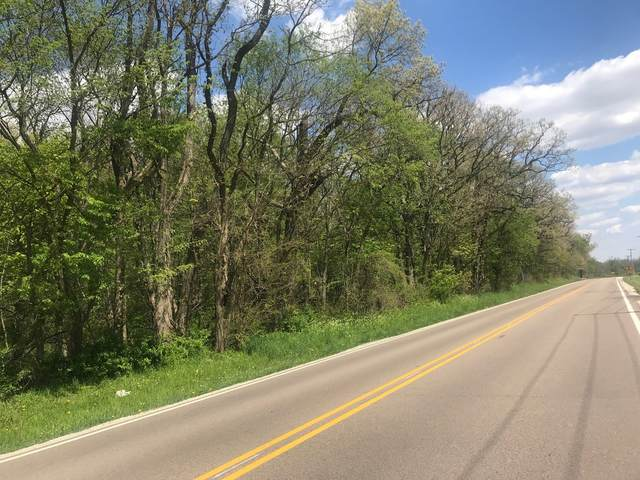 Lot 1 Rhodes Avenue, Big Rock, IL 60511 (MLS #10380402) :: Littlefield Group