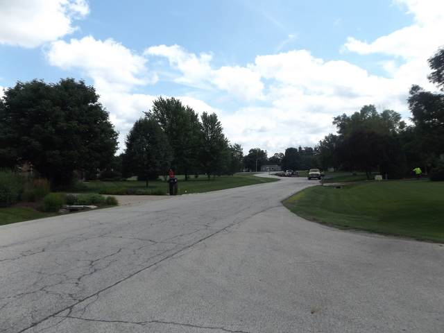 LOT 1&2 East Main St Newbold Road, Cary, IL 60013 (MLS #10387261) :: John Lyons Real Estate