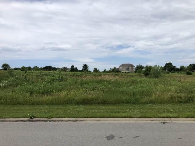 4569 Cherry Road, Oswego, IL 60543 (MLS #10436767) :: Littlefield Group