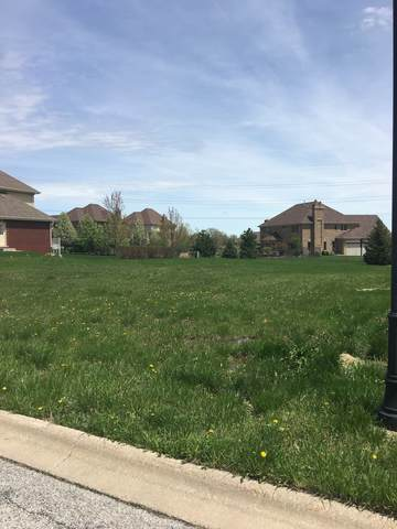20389 Grand Traverse Drive, Frankfort, IL 60423 (MLS #10596740) :: The Wexler Group at Keller Williams Preferred Realty