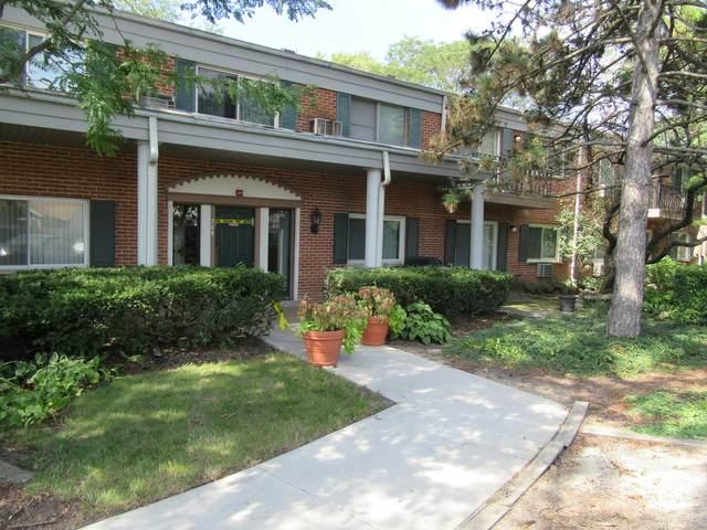 706 E Algonquin Road #105, Arlington Heights, IL 60005 (MLS #10638370) :: The Dena Furlow Team - Keller Williams Realty