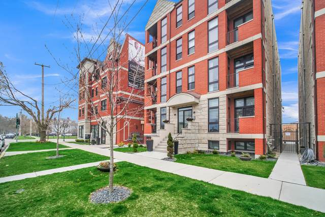 4226 S Ellis Avenue 2N, Chicago, IL 60653 (MLS #10748876) :: Helen Oliveri Real Estate