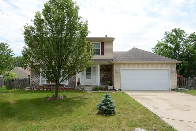 15 Joslyn Drive, Elgin, IL 60120 (MLS #10756537) :: Littlefield Group