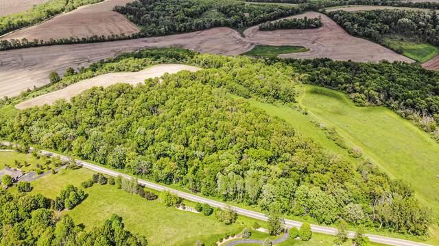 Lot 16 Meyers Road, Mt. Carroll, IL 61053 (MLS #10762428) :: John Lyons Real Estate