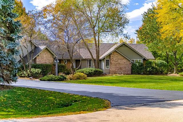 13523 Dokter Place, Homer Glen, IL 60491 (MLS #10801749) :: BN Homes Group